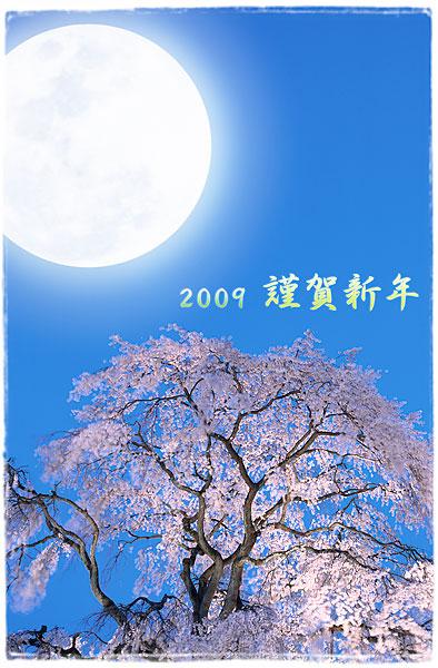 2009nenga.jpg